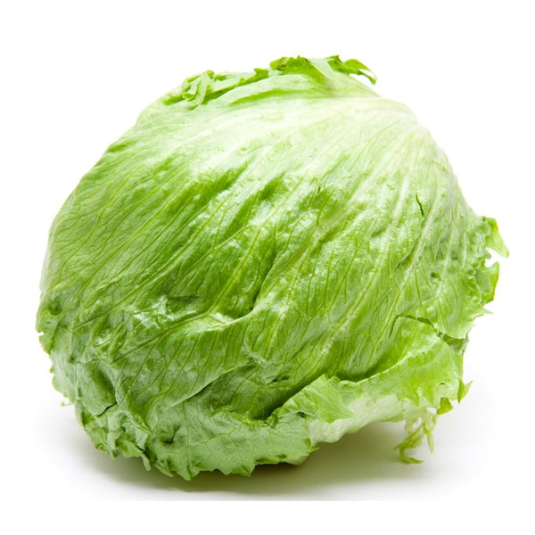 Lettuce Iceberg (Whole)
