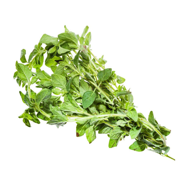 Oregano (Bunch)