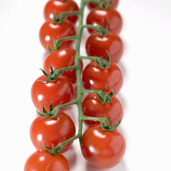 Tomatoes Cherry Truss (Punnet)