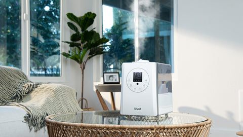 LV600HH Humidifier on a table