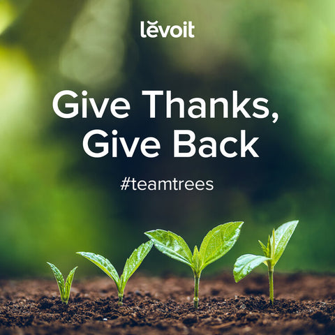 Levoit Joins #TeamTrees, Give Thanks, Give Back