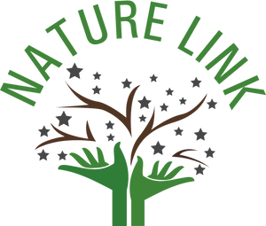 THE NATURE LINK STORE