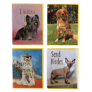 Ridiculous Pets Any Occasion Cards- 4 Pack
