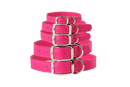 Rescue Care Collar