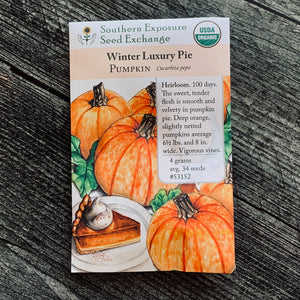 Winter Luxury Pie Pumpkin