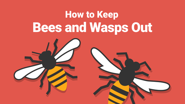 How to Keep Bees and Wasps Out of Your Pool