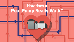 How Does a Pool Pump Really Work?