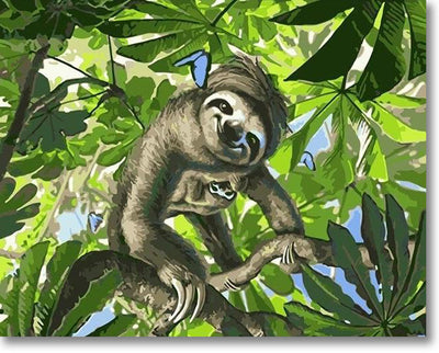 Sloth On A Tree - Paint By Numbers