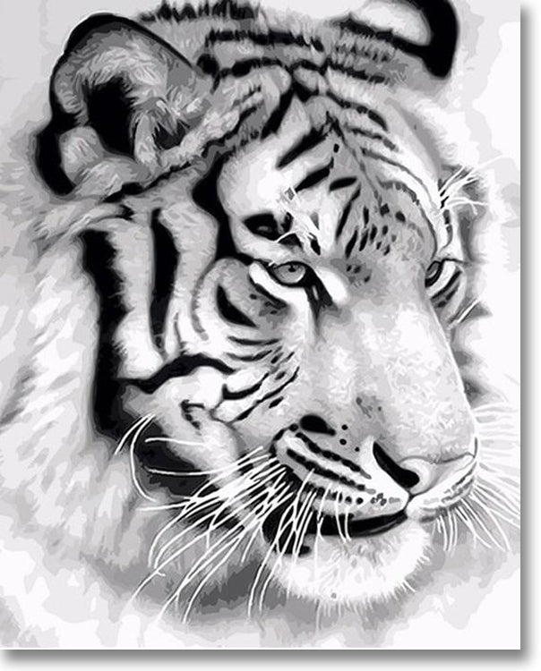 Majestic Tiger - Paint By Numbers
