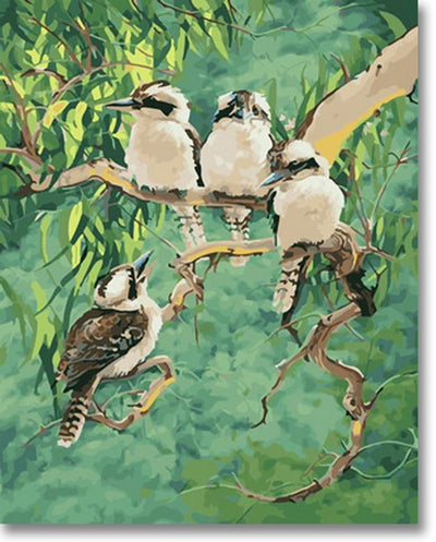 The Laughing Kookaburra - Paint By Numbers