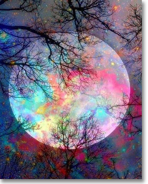 Good Night Moon - Paint By Numbers