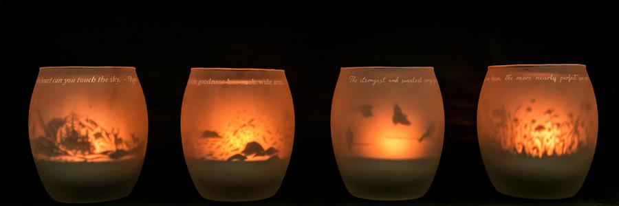 Shado Candle: Hummingbirds