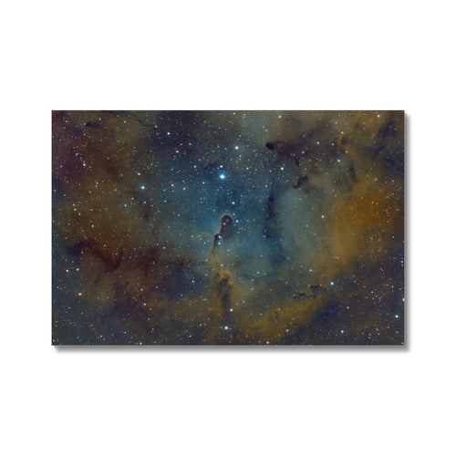 Elephant's Trunk Nebula Canvas