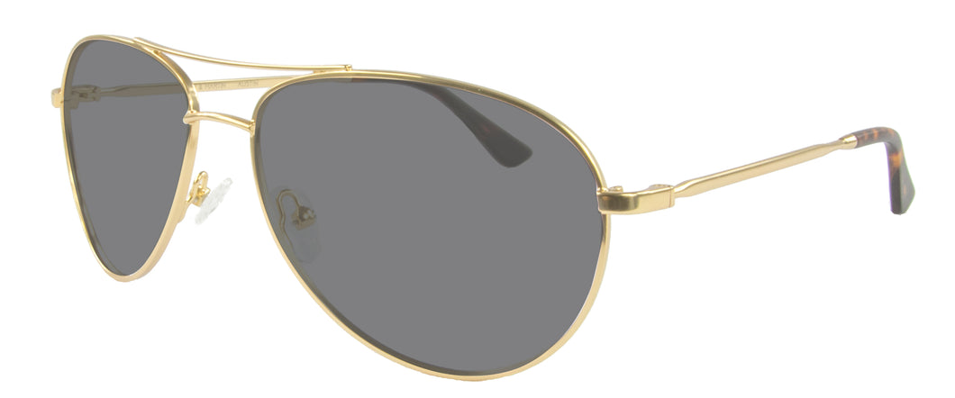Brushed Gold sunglasses