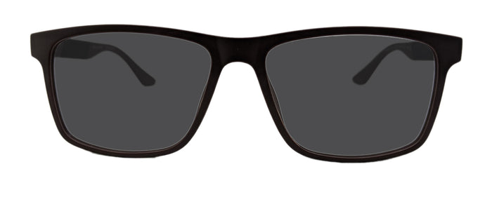 Woodard Sunglasses