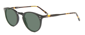 Black Tortoise Temples sunglasses