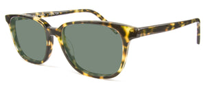 Sea Tortoise sunglasses