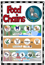 Load image into Gallery viewer, Science - Food Chains