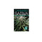 Cannabis Sativa VOL 2