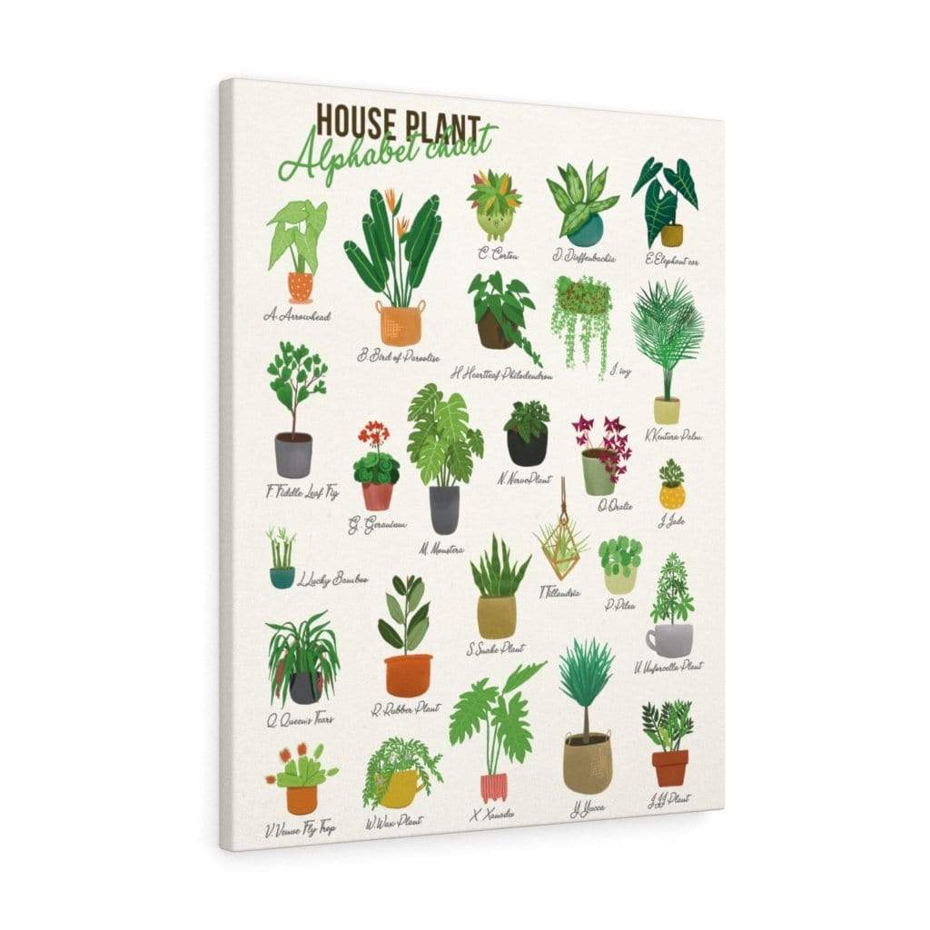Canvas 24″ × 30″ / Premium Gallery Wraps (1.25″) Houseplant Alphabetical - HPF0355B06 Plantspree