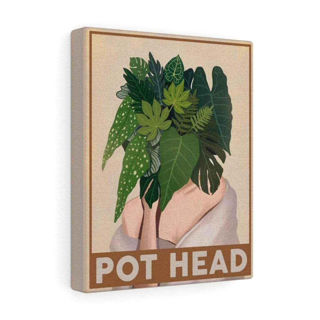 Canvas 8″ × 10″ / Premium Gallery Wraps (1.25″) Pot Head - HPF0352B06 Plantspree