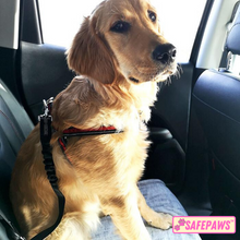 Load image into Gallery viewer, Safe Paws™️ Pet Car Seat Belt