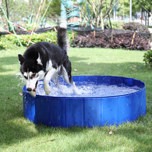 WetPaws™️ Portable Paw Pool