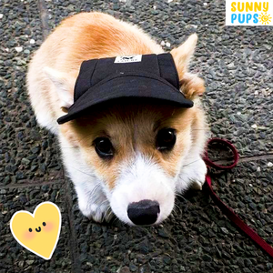 Sunny Pups™ Limited Edition Doggy Cap
