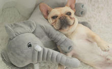 Load image into Gallery viewer, Buddy The Elephant Pillow™️