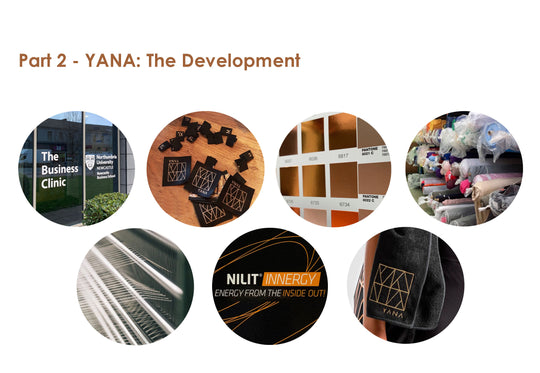 Part 2. YANA: The Development