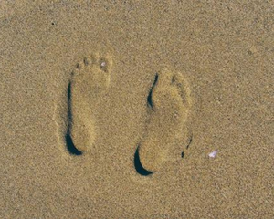 What Is Your Footprint?