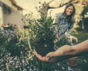 Making The Most Of Spring: Gardening, Foraging, and Slow Living