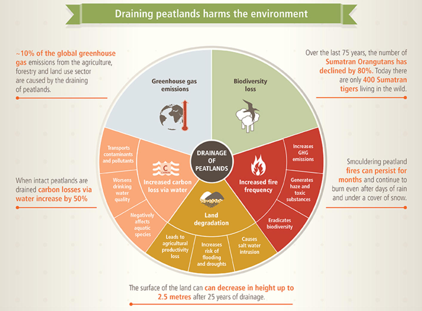 Peatland Conservation Infographic