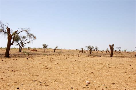 Desertification in Sudan