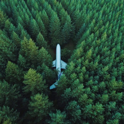 Plane in a forest