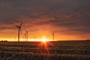 carbon offsetting wind farm renewable energy