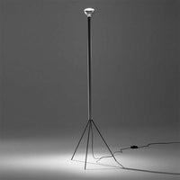 Luminator Floor Lamp