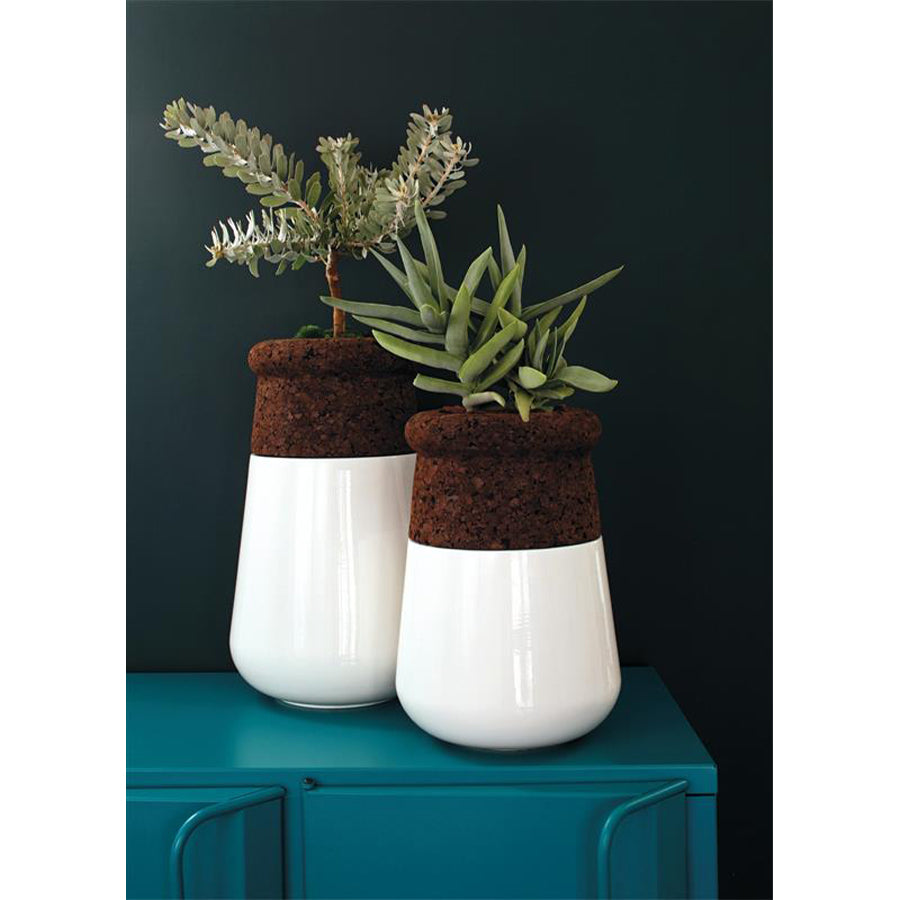 Soma Table Top Planter