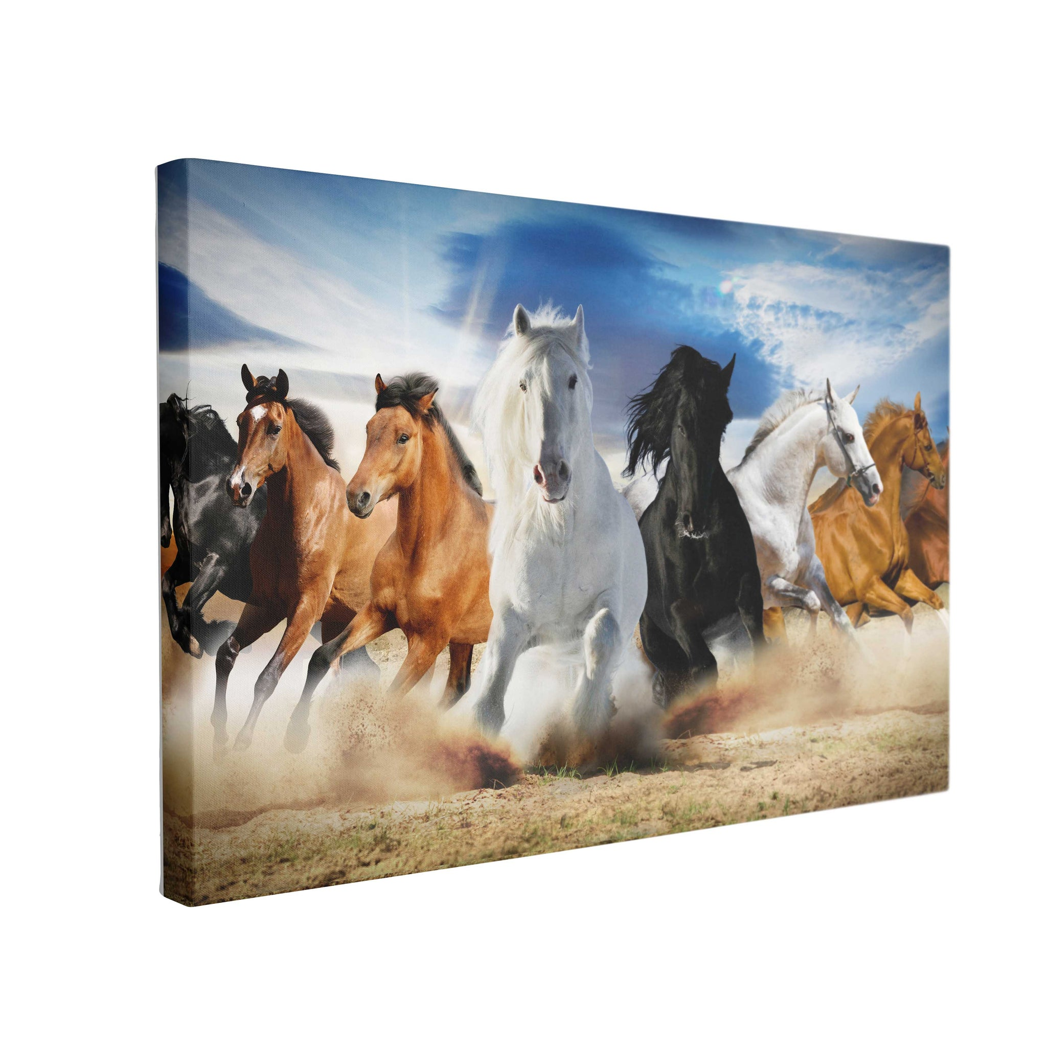 Tablou Canvas Full Speed Gallop