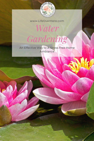 Water Gardening For Relaxation