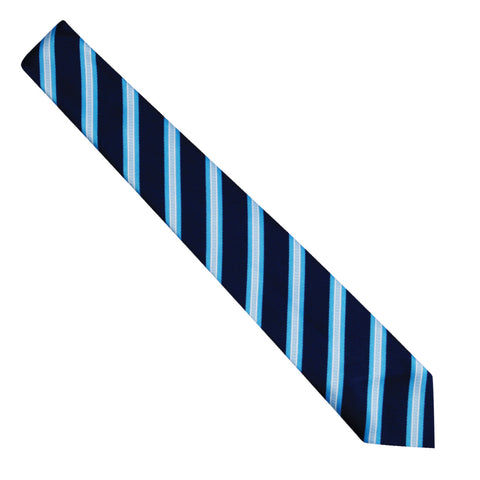 Discovery Academy Tie #DTIE