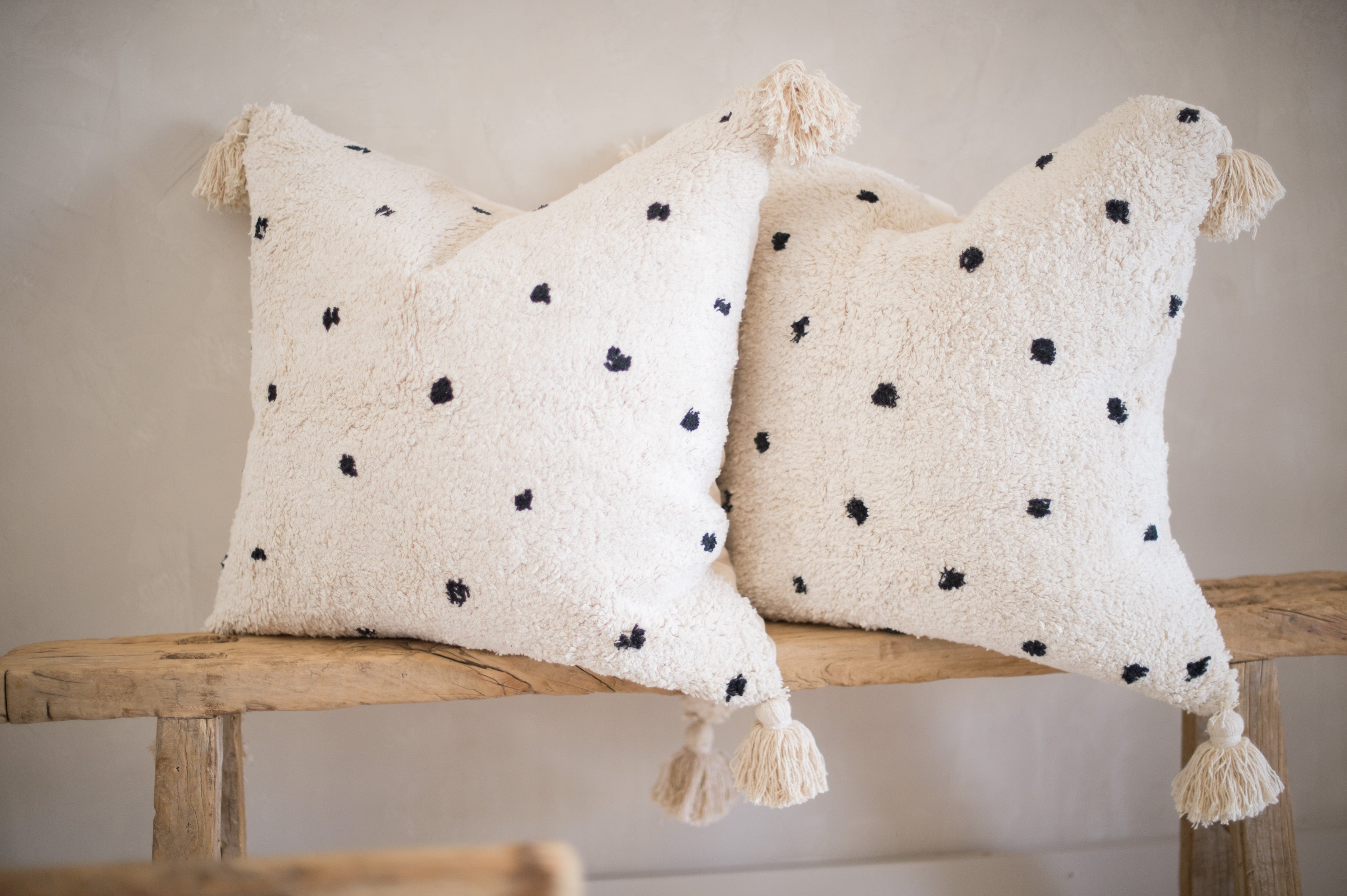 Copy of Decorative Pillow