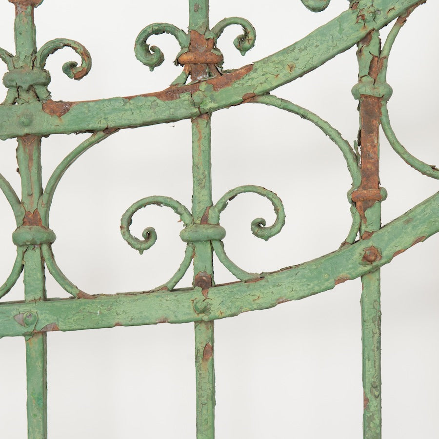 Ivy Rusted Gate