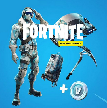 Fortnite: Deep Freeze Bundle (PS4)