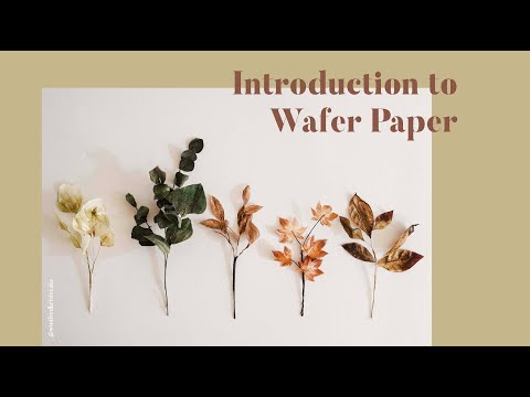 Introduction to Wafer Paper