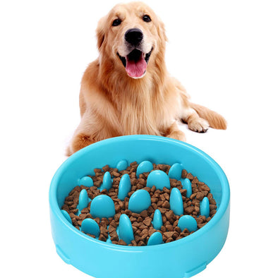 Slow Feeder Pet Bowl New Arriving