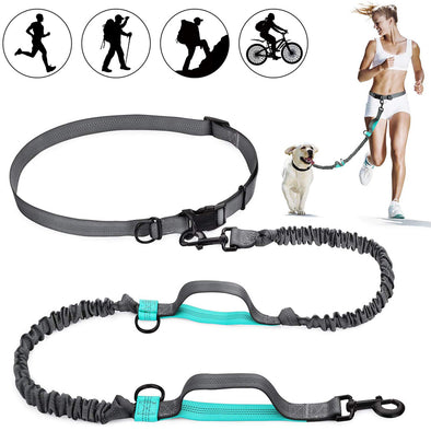 Retractable & Reflective Hands Free Dog Leash with Dual Bungees for Outdoors