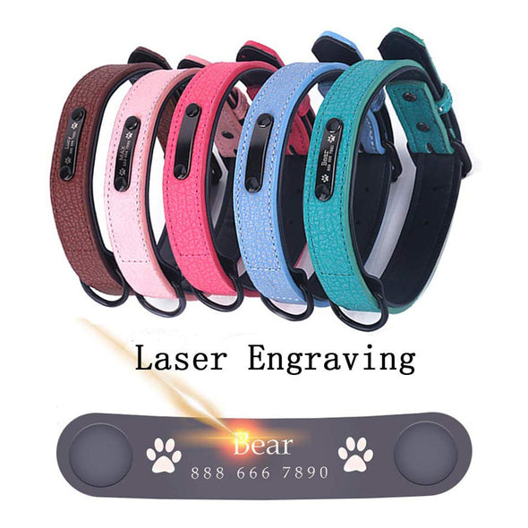 Adjustable Customized Pet Collar with Name & Phone Number