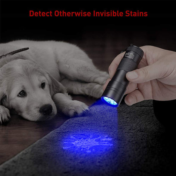 12 LEDs UV Blacklight for Pet Urine and Stains Detector
