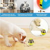 Dog Food Dispenser Interactive IQ Treat Ball